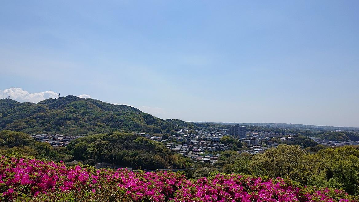 太田和つつじの丘